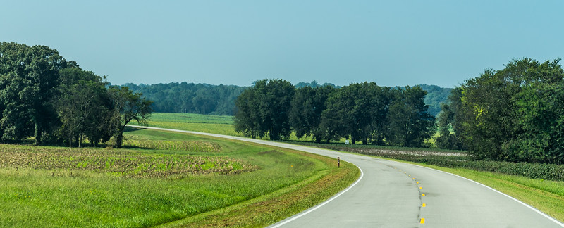 Natchez Trace Parkway, AL, MM 326 -- 9/21, 10:20 am In all of its 442 miles, there is not a single traffic light...