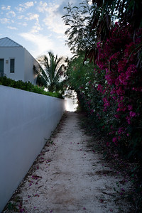 Sapodilla Bay Path