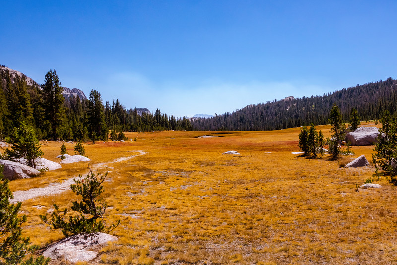 The Meadow at Cathedral Pass