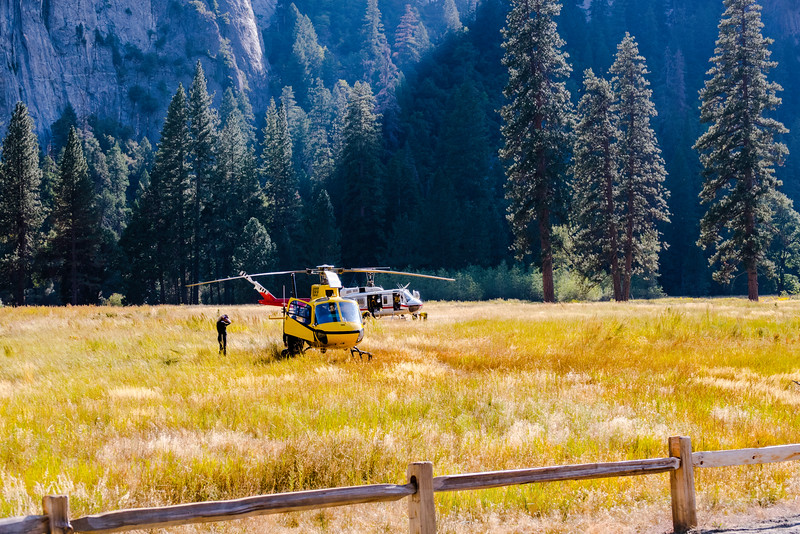Rescue at El Capitan Meadow