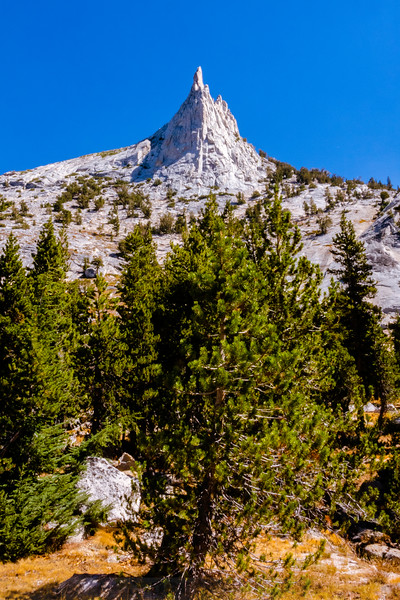 A spire of Cathedral Peak