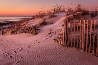 Morning Light on the Dune