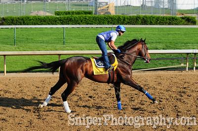Colonel John - Kentucky Derby Horse Backside - Churchill Downs