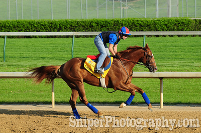 Adriano Backside - Churchill Downs