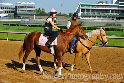 Kentucky Oaks horse Flying Spur - Churchill Downs - Trained by Bill Mott