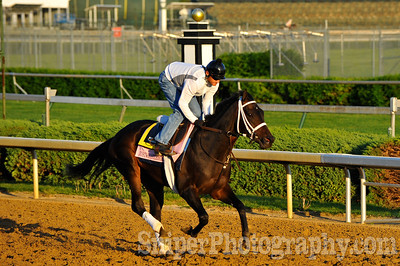 Kentucky Oaks horse JustWhistleDixie - Churchill Downs - Trained by Kiaran McLaughlin