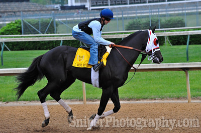 Kentucky Derby horse I Want Revenge trained by Jeff Mullins, jockey Joe Talamo.