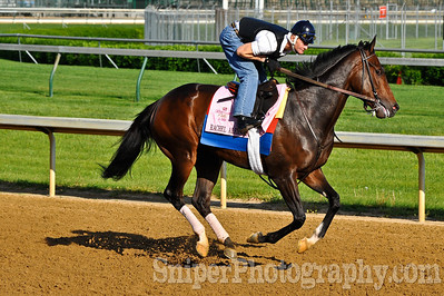 Kentucky Oaks horse Rachel Alexander - Churchill Downs - Trained by Hal Wiggins