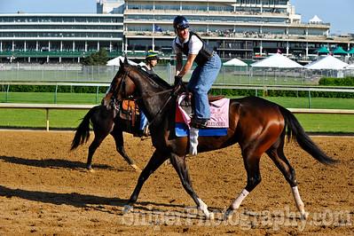 Kentucky Oaks horse Rachel Alexander - Churchill Downs - Trained by Hal Wiggins