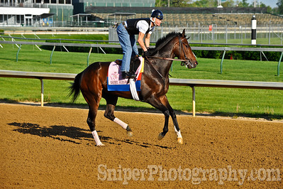 Calvin Borel on top of Rachel Alexandra at Churchill Downs
