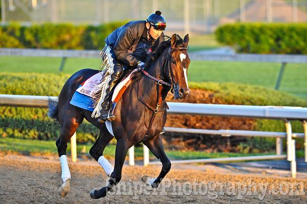 Kentucky Oaks horse Rachel Alexander works out on the backside of Churchill Downs.