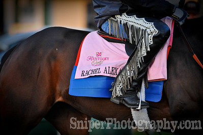 Kentucky Oaks horse Rachel Alexander works out on the backside of Churchill Downs.