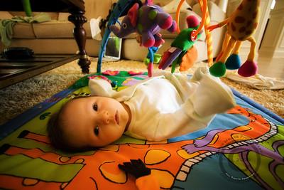 Birth to Three Months