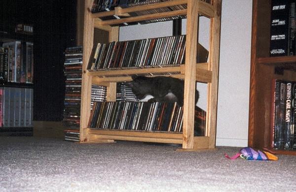Kazon investigating the CD rack (kazon07)