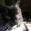 """<a href=""""http://photos.xenogere.com/photo/168/"""">Blog entry</a>"""