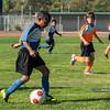 PB030973<br /> November 3, 2012
