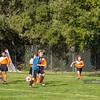 PB030961<br /> November 3, 2012