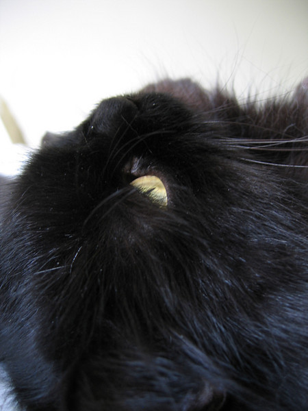 A close-up profile of Vazra's face as he lies on his back