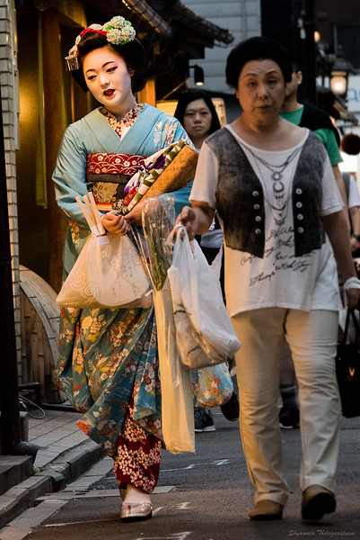 Walking in the light - a maiko and her helper