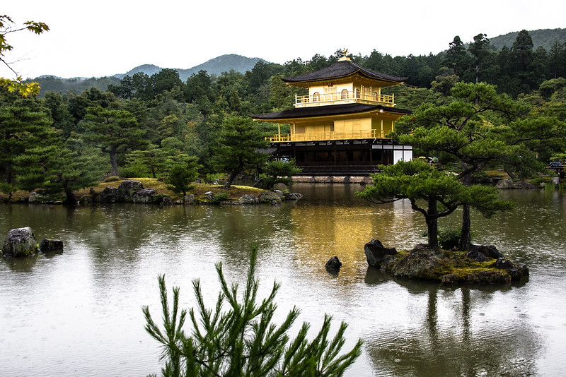 Kinkaku-ji, the golden temple, on a rainy day.