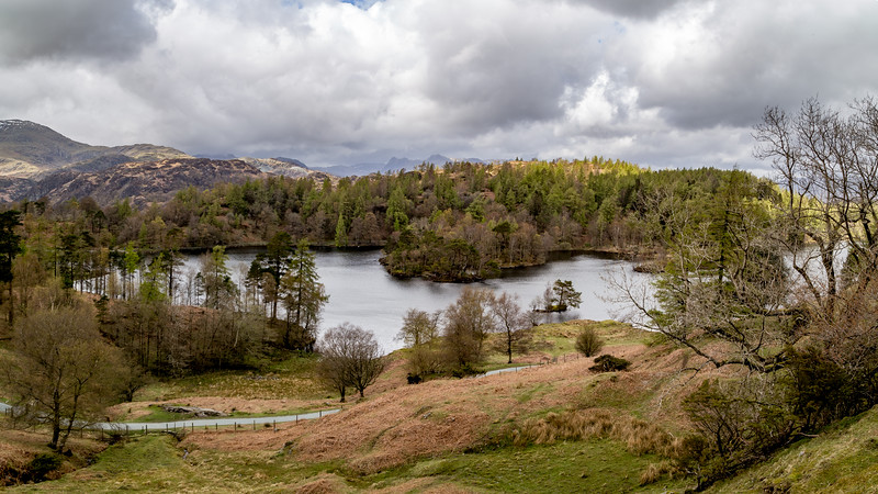 Tarn Hows Panorama