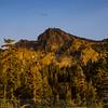 Sierra Buttes Scene