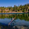 Along Smith Lake