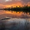 Everglades National Park - June 2014