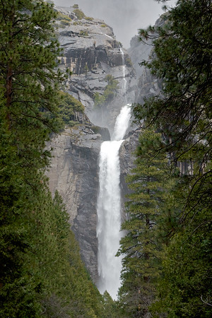Yosemite Falls from a Distance Through the Trees