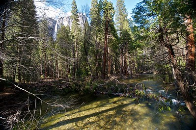 Stream at Base of Yosemite Falls