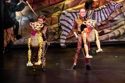LEGACY LION KING JR CAST B 3-17-17---8