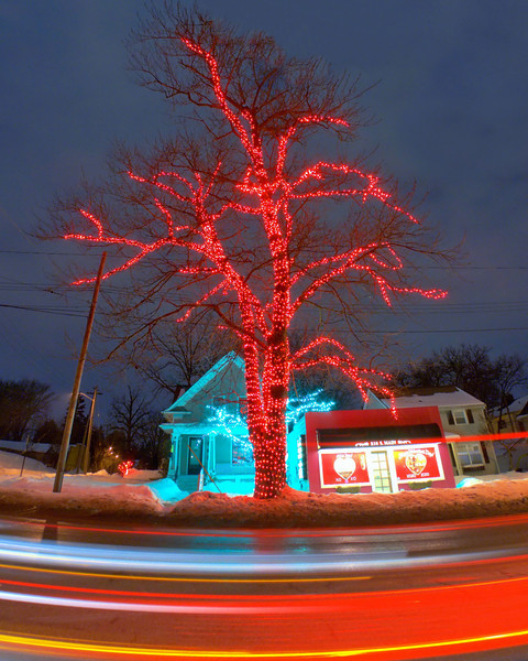 The Lit Tree