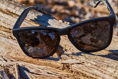Abandoned Sunglasses