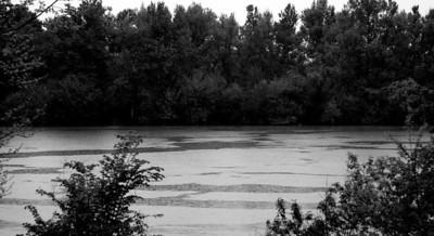 殺戮があたり前のように行われ、 岸に放置された死体、 流れた赤い血の川。