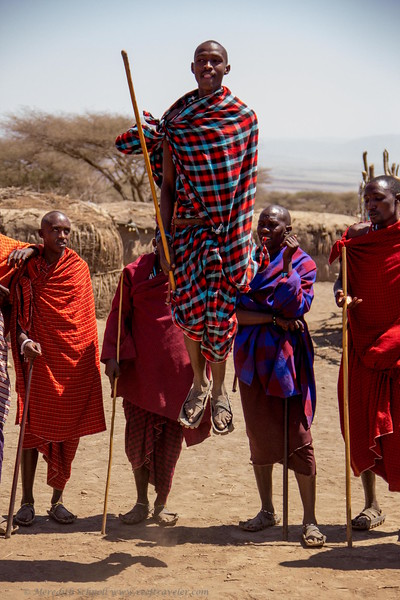 Maasai Man Performing the Adumu or Jumping Dance