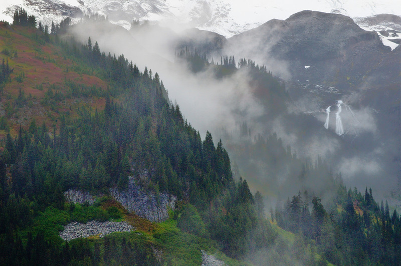 Fog & Storm Clearing On Flank Of Mount Rainier