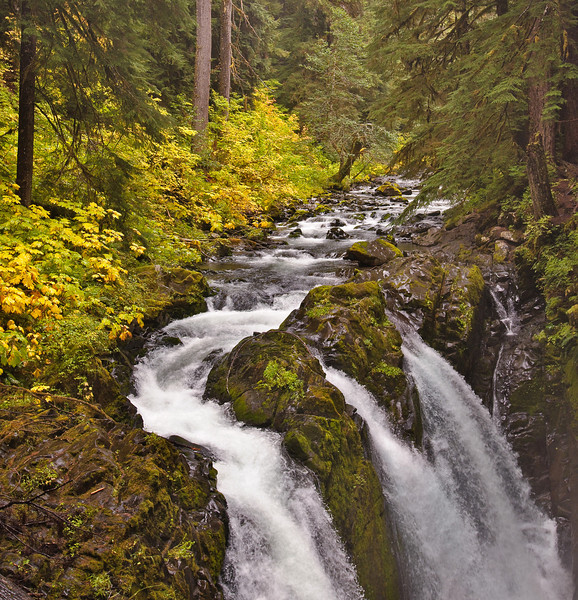 Sol Duc Falls - Olympic National Park.  It's hard to tell but it was REALLY raining!