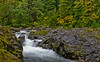 Salmon Cascases on Sol Duc River - Olympic national Park