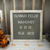 Rowan Newborn  002