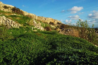 Dingli Cliffs - Dingli Malta