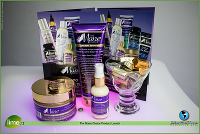 The Mane Choice Product Launch