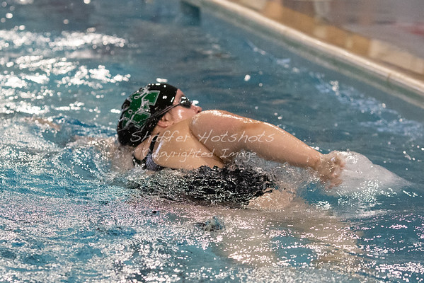 Maret Swim and Dive at Stone Ridge