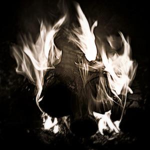 Spring Fire Memory