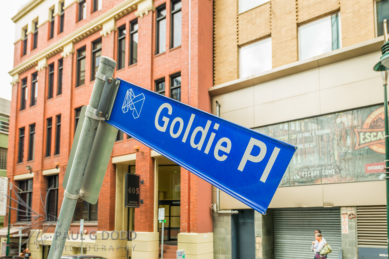Goldie Place