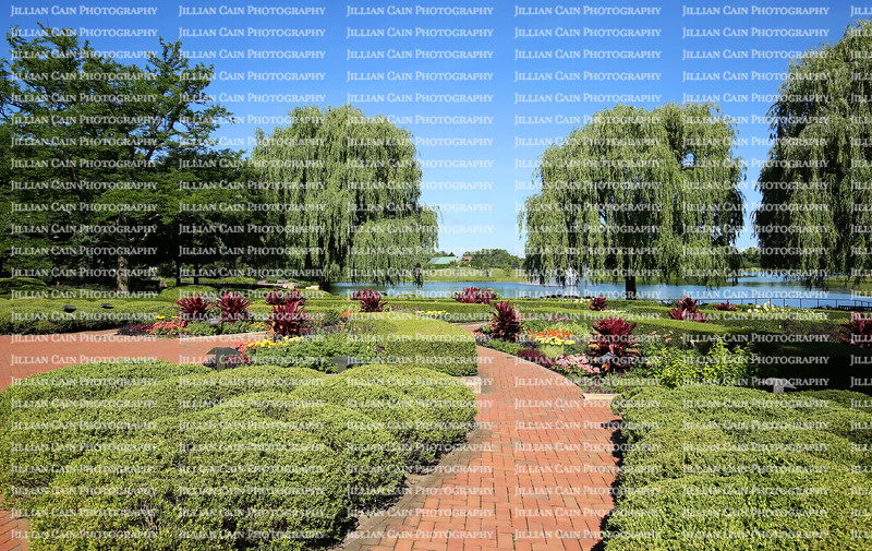 Chicago Botanical Gardens greets you with lush boxwood hedges and contrasting red ti plants that lead your eyes up to the weeping willows at the waters edge located in Glencoe, Illinois, USA.