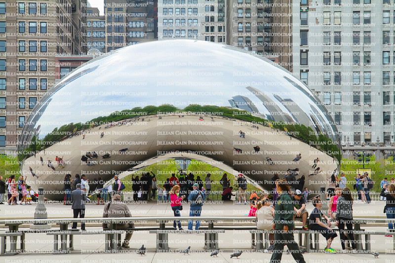 """Tourist talking, walking and taking cell phone photos of themselves reflected in """"The Bean"""" in Chicago, Illinois, USA"""
