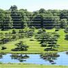 Japanese Garden at the Chicago Botanic Gardens