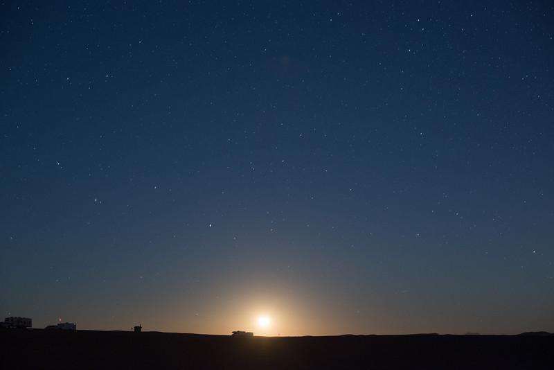 Moon Rising, Gecko Pad, Glamis
