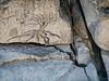 090119_8849 South Yuba River art