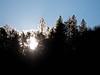090119_8560 Winter sun through trees on South Yuba River